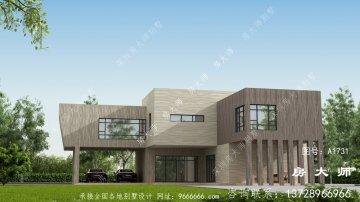 乡村现代二层别墅设计图